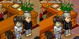 example_websnap